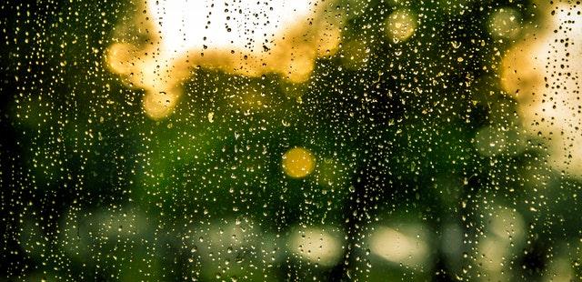 3 måder du kan bruge en regnvejrsdag på